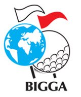 bigga-logo